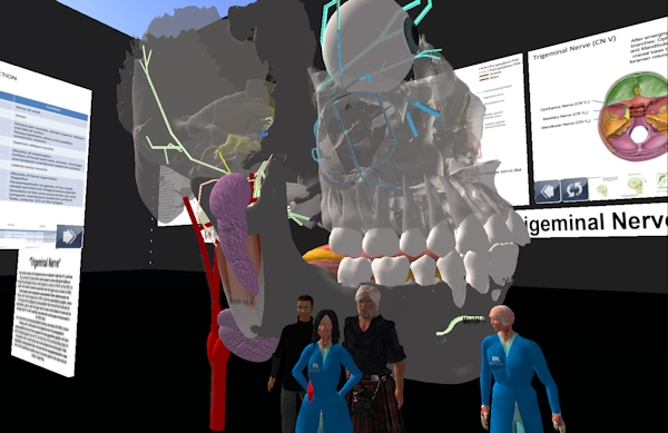 UWA and UK collaboration in Second Life