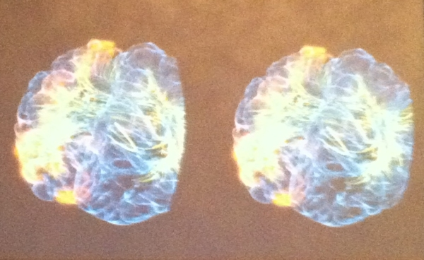 VR 'glass brain' projection at SWSX 2014